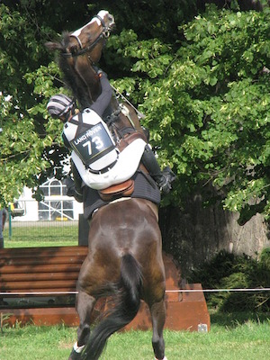 Cavalli-difficili-1