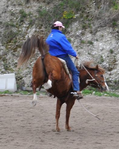 Cavalli-difficili-4