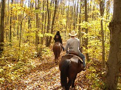 Passeggiata-cavallo-2