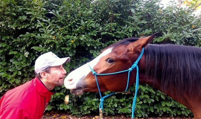 Foto-articolo-rapporto uomo-cavallo-la fiducia