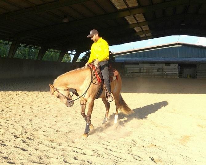 Foto-Articolo-Hai un cavallo leggero o pesante-2